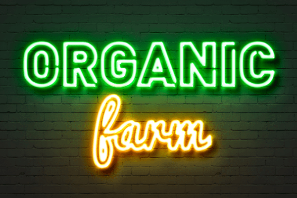Orgqanic food